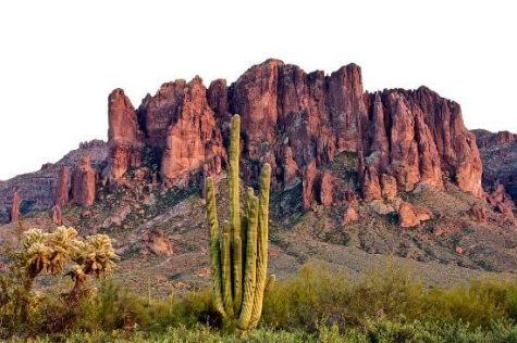 Best Places In Arizona to Travel for Spring Break