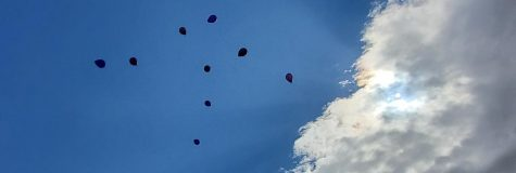 A photo of purple balloons being released in honor of Mr. Sheppard.