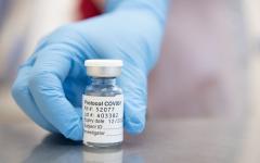 The Achievements of the COVID Vaccine
